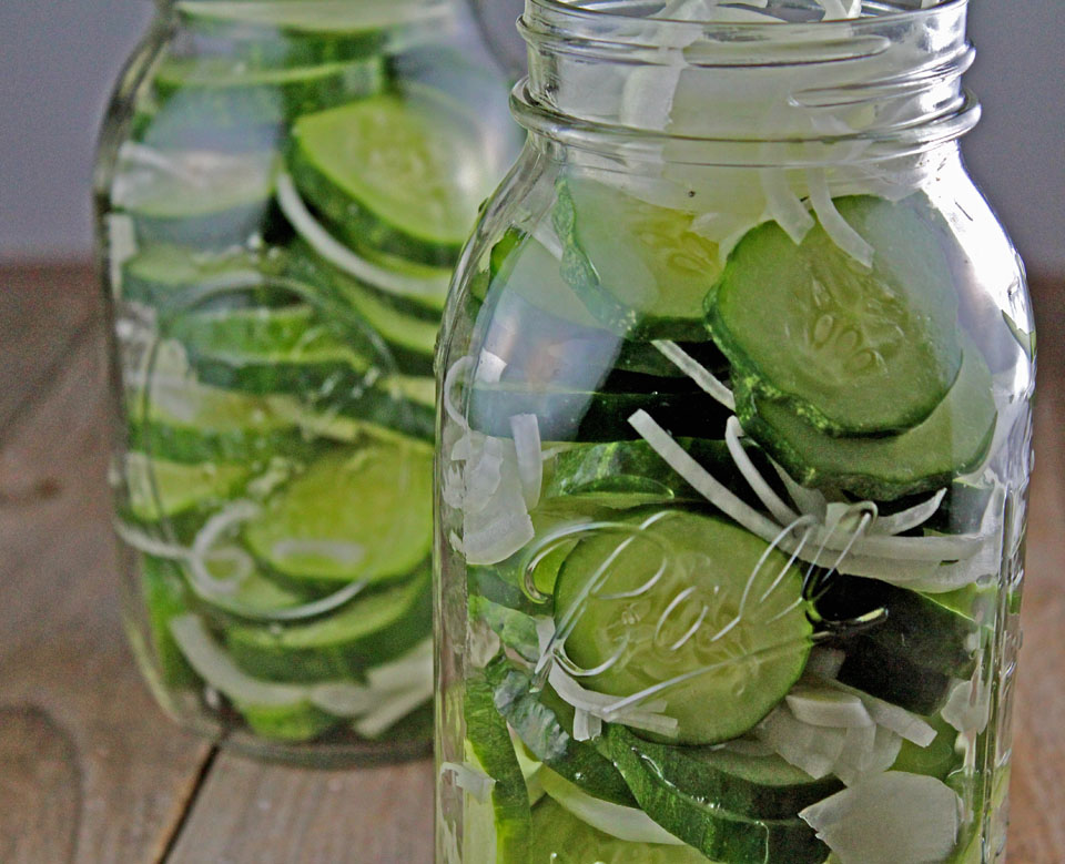 Guest Post: Refrigerator Pickles — The Kitchen Witch